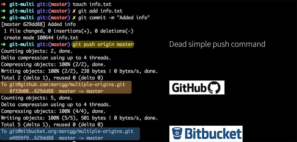 Github and Bitbucket push